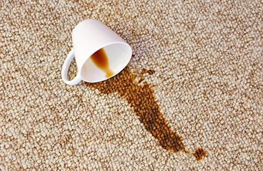Çay Lekesi Networkdry İle Problem Değil