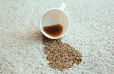 Kahve Keyfinizi Hiçbir Şeyin Bozmasına İzin Vermeyiz