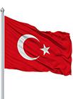 Bayrak Kuru Temizleme (Metrekare)