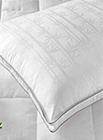 Yastık Kuru Temizleme (Elyaf)
